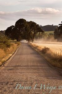 Dirt road_002