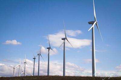 Wind Power_5866