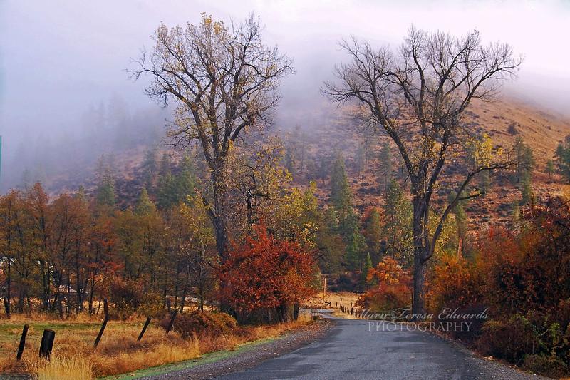 Moffet Creek Journey