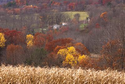 10 10 29 Fall Scenery-040