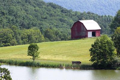 11 07 31 Mercur Hill Farms-039
