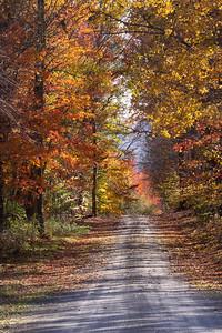 10 10 20 Mercur Fall Scenery-144