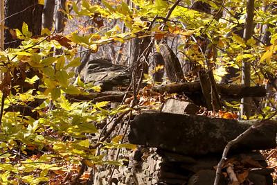 10 10 20 Mercur Fall Scenery-138-2