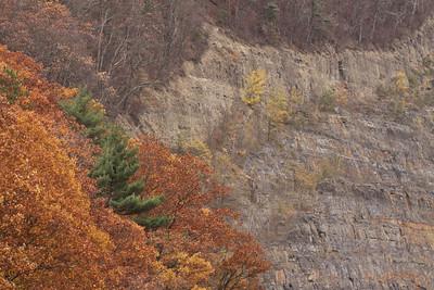 10 10 29 Fall Scenery-103