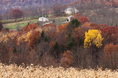 10 10 29 Fall Scenery-042