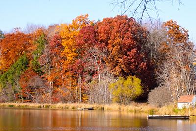 12 10 22 Fall Scenery Bradford Co-098