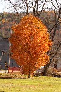 12 10 22 Fall Scenery Bradford Co-138
