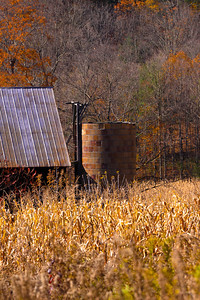 12 10 22 Fall Scenery Bradford Co-080