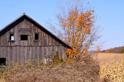 12 10 22 Fall Scenery Bradford Co-023