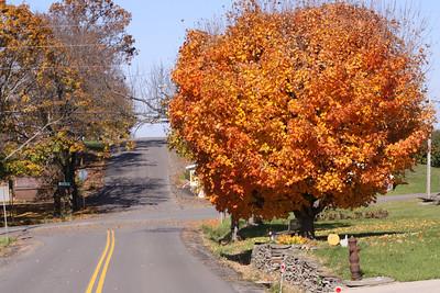 12 10 22 Fall Scenery Bradford Co-009