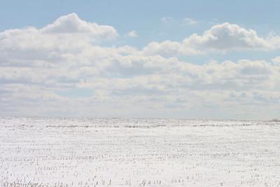 05 03 04 winter  0105 a