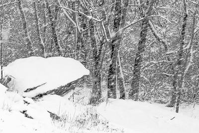 14 11 26 Snow on Mercur Hil-009