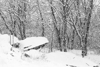 14 11 26 Snow on Mercur Hil-005