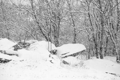 14 11 26 Snow on Mercur Hil-002