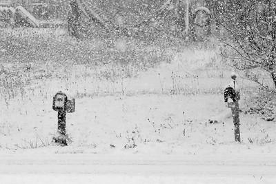 14 11 26 Snow on Mercur Hil-006
