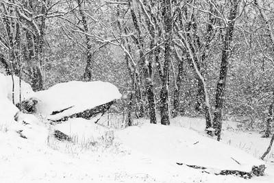 14 11 26 Snow on Mercur Hil-004
