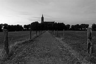 Elisabethkirche, Louisendorf, on a lush July evening (b/w)