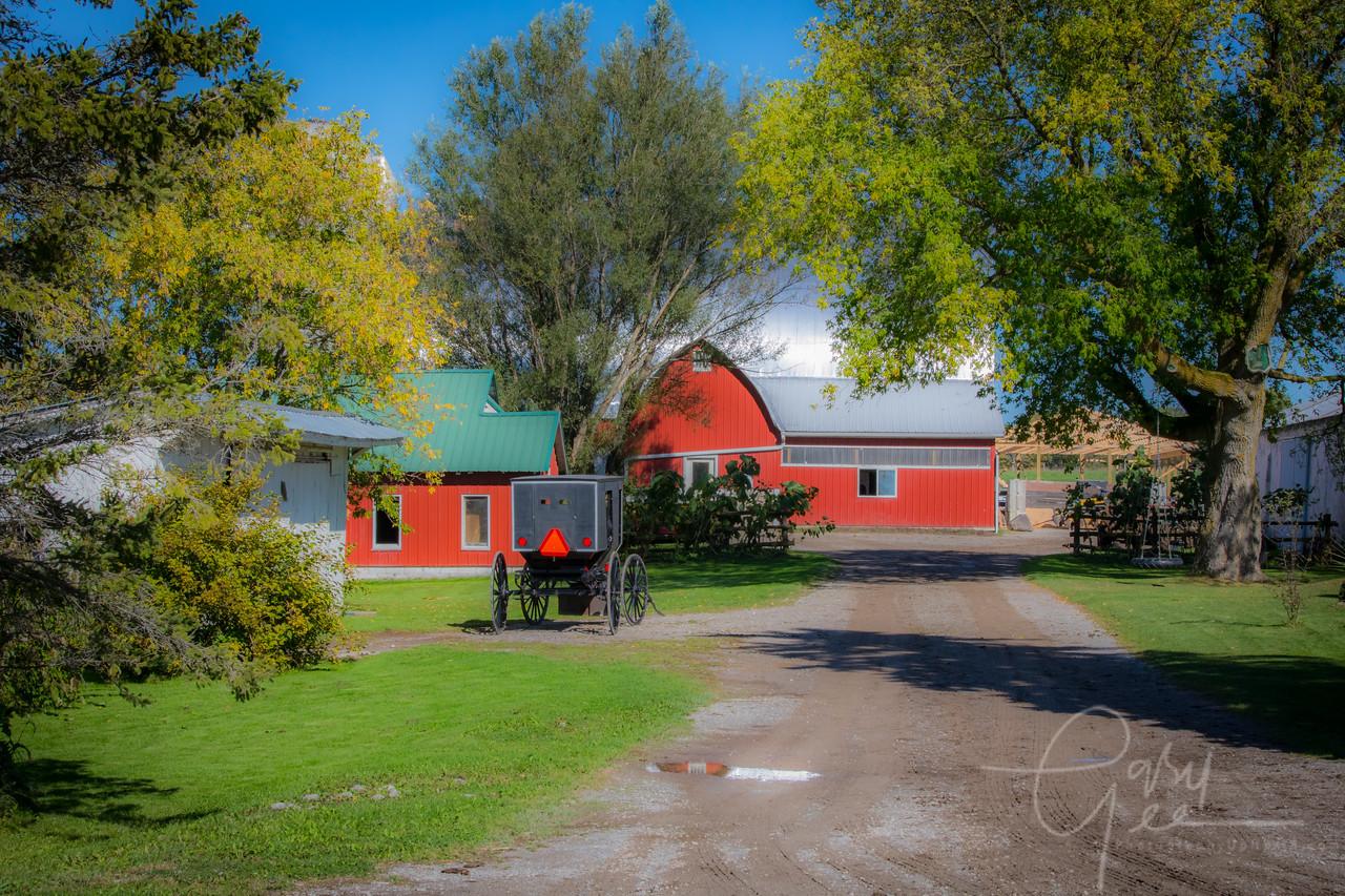 Amish Farm - Mio, MI