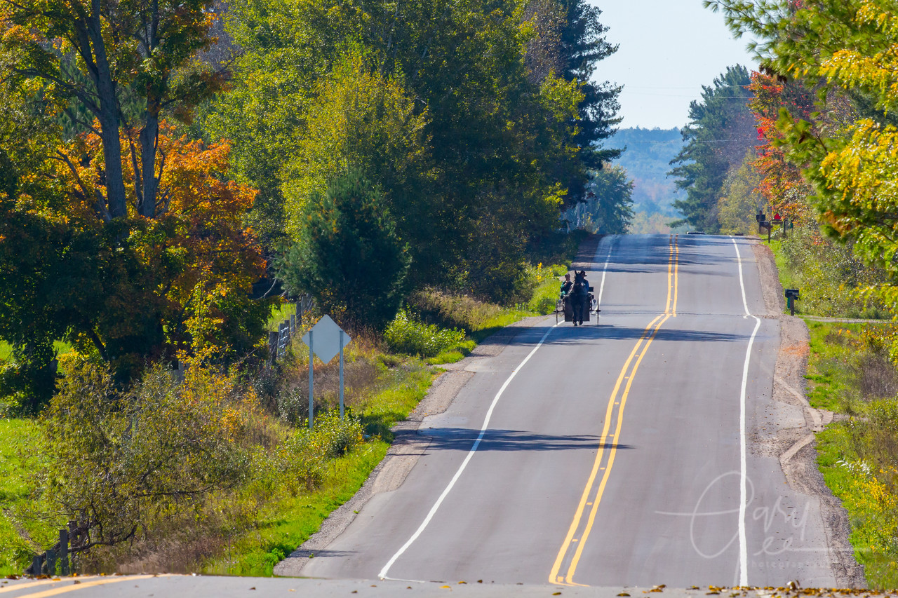 Sunny Fall Day on a Country Road