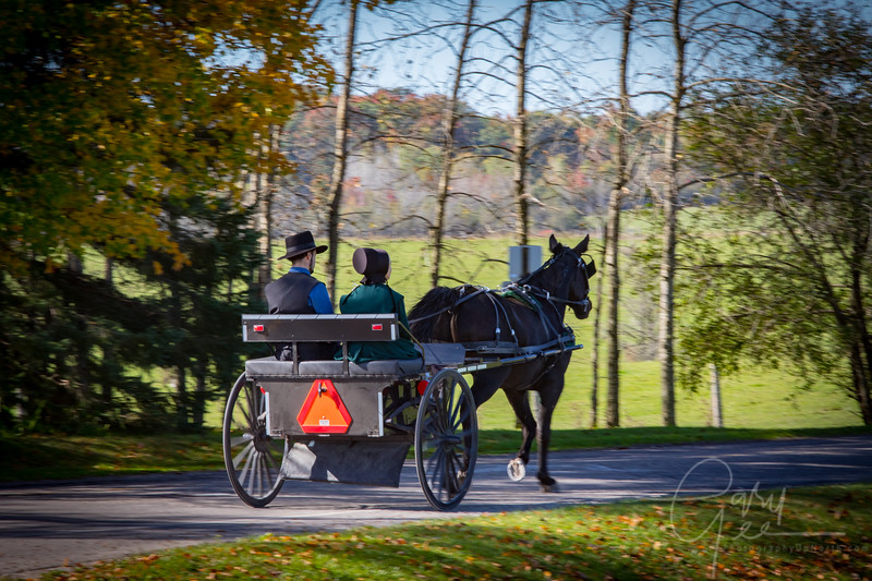 Amish Couple on a nice fall day in Mio, MI
