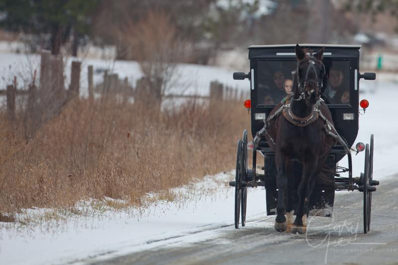Amish family Michigan