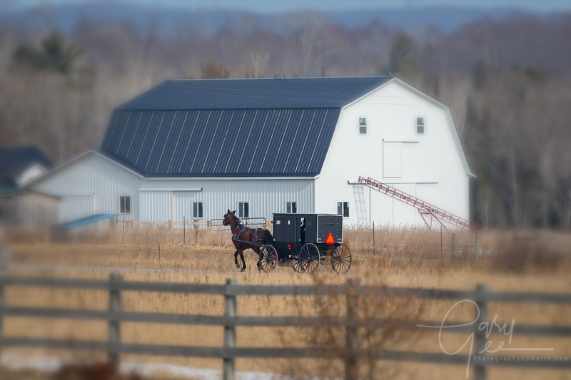 Amish Country Road with Barn