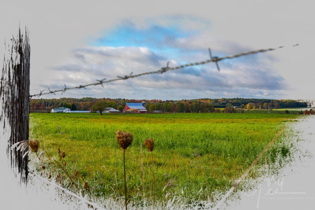 Amish Country, Mio Michigan.