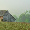 Aug 19 - Country Scene in West Virginia<br /> <br /> I took this photo in the early morning hours while some fog still hung in the air.