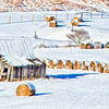 Jan 14 - Snow Covered Hay Bales<br /> <br /> Most of the snow has now melted except in the higher elevations, but I was able to capture this West Virginia country scene before the snow was gone.  <br /> <br /> I attempted to post this yesterday but I am still having internet issues :(