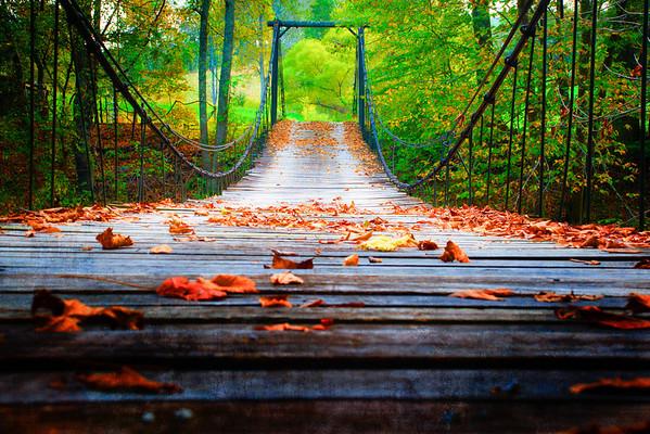 Oct 14 - Fallen leaves on a swinging bridge