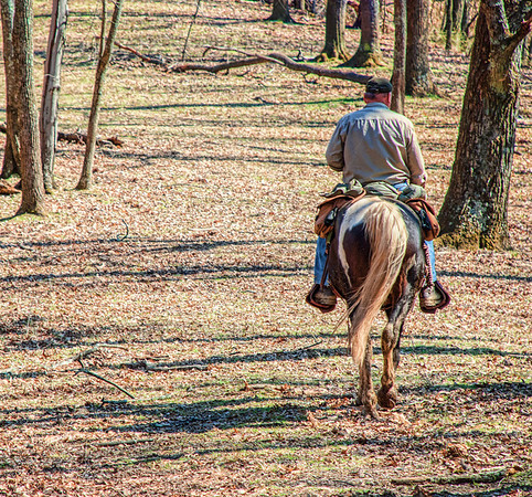 Mar 15 - Riding Out - this is my husband on his horse, Storm, at the beginning of a trail ride.