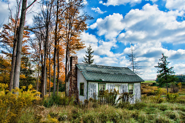 Nov 12 - Little Cabin at the Edge of the Wood