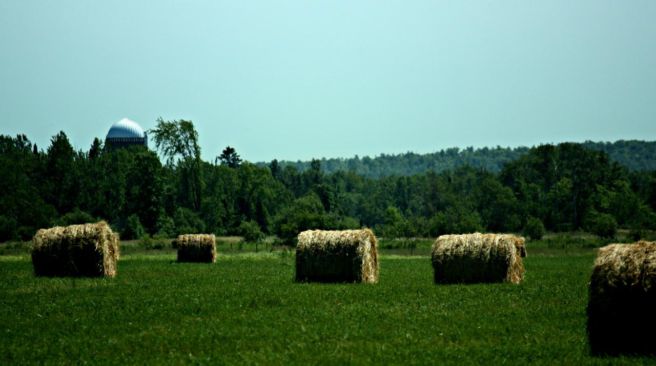 Rollin' The Hay