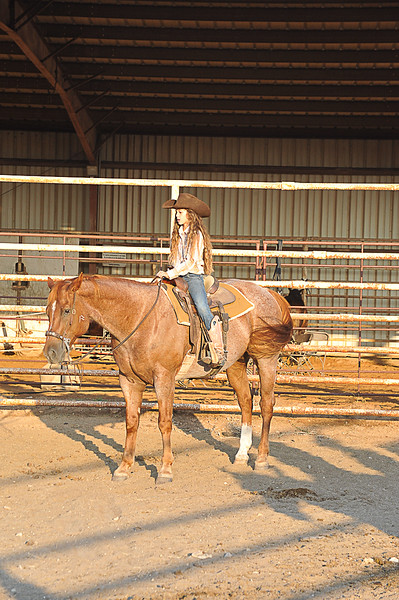 2013 Sept 14 WWR Horse Sale-7548
