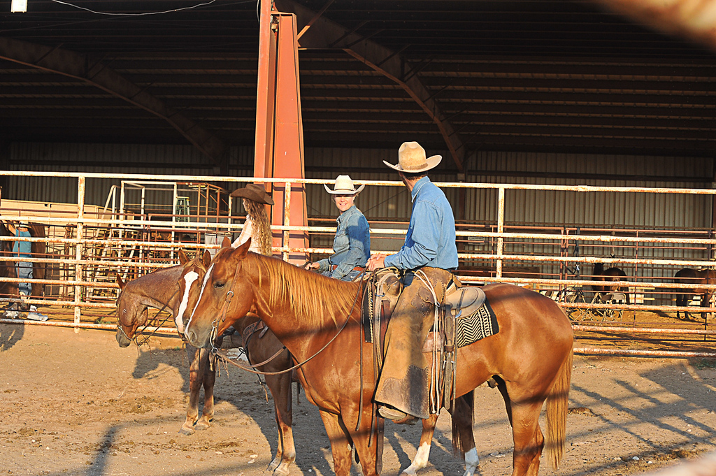 2013 Sept 14 WWR Horse Sale-7545