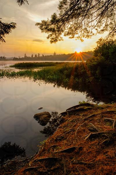 Sunrise in Whitney Wilderness