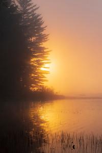 Sunrise Fire