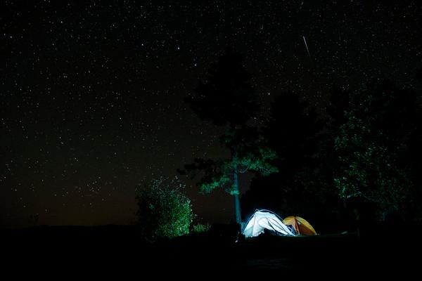 Nina Moose Camp