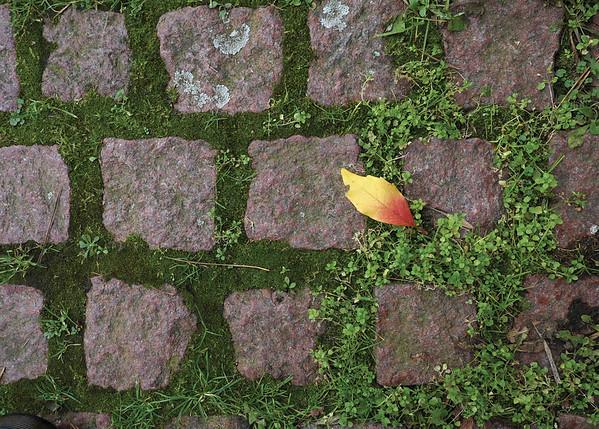 Unterfranken Autumn