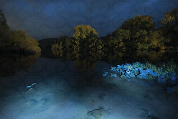 The River Main at Night