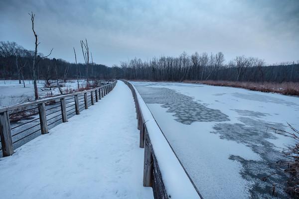 The Beaver Marsh Boardwalk
