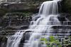 Beginning of the Falls