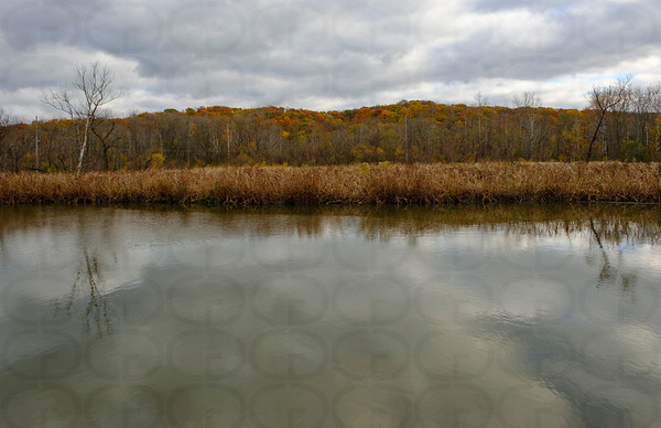 Somber Autumn
