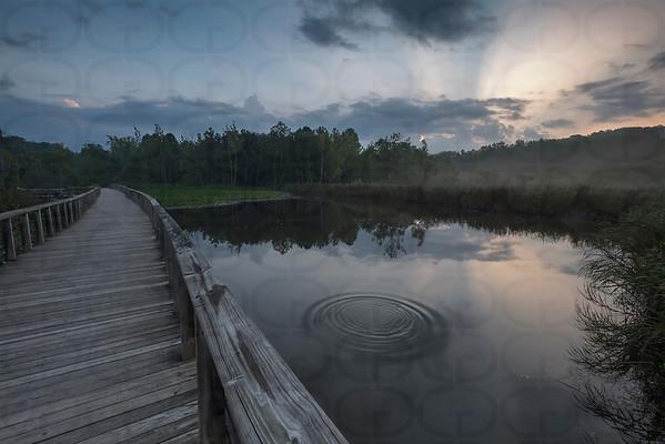 Sunrise at the Marsh