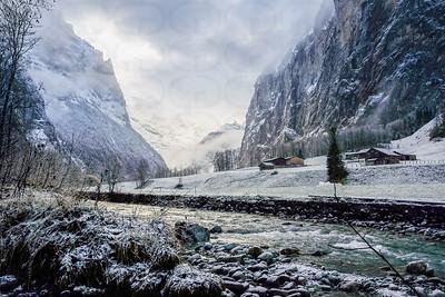 Wintery Morning Glory