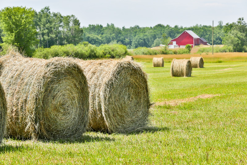 Bales and Barn