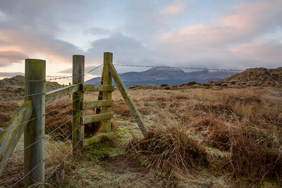Frosty Morning at Murlough Nature Reserve-IMG_1693
