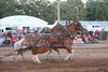 Horse Pulls (7)