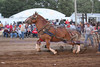 Horse Pulls (9)