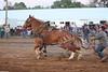 Horse Pulls (18)